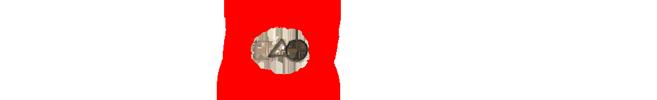 Takemusu Aikido Logo