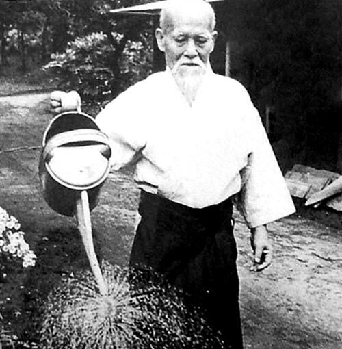 O-sensei watering